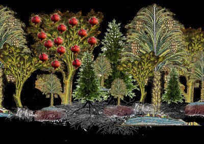 Ultimate Lving: largetrees in colour with pomegranates