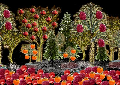 Ultimate Living: large trees in colour with pomegranates and dates and persimmons on forest floor